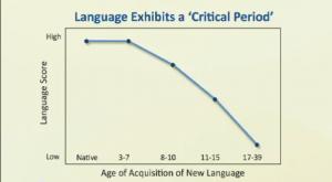 bambini imparano inglese:lingue entro 7 anni patricia kuhl