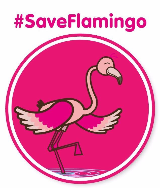 Campagna #saveflamingo
