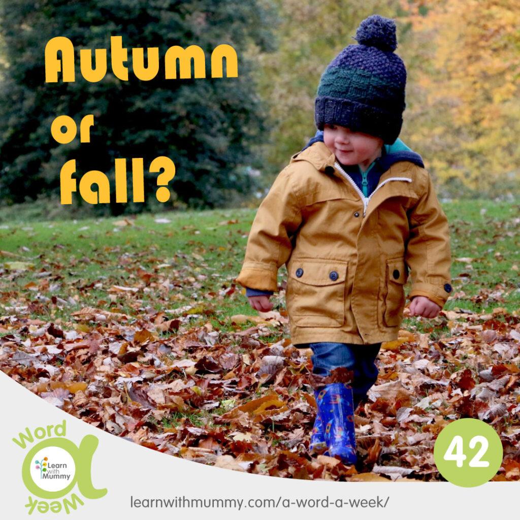 un bambino cammina sun prato ricoperto di foglie accanto alla scritta autunno in inglese